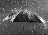 34450116 - black and white photo of umbrella in heavy rain